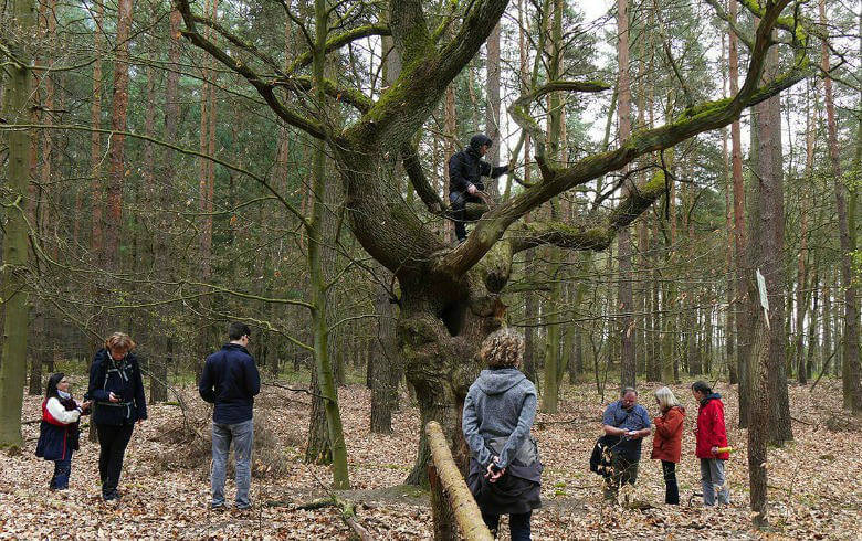 Gruppenausflug im Wald
