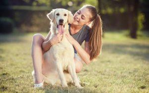 Familienspass mit Hund