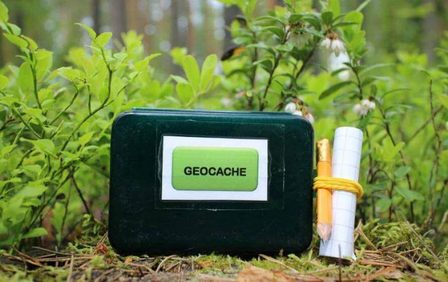Geocache im Wald