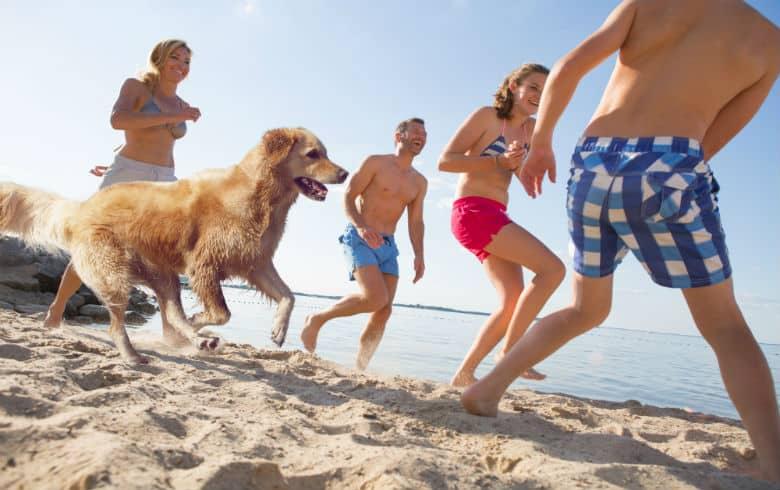 Familie spielt im Urlaub mit Hund am See